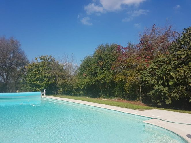 Pool, greenery and bright blue sky