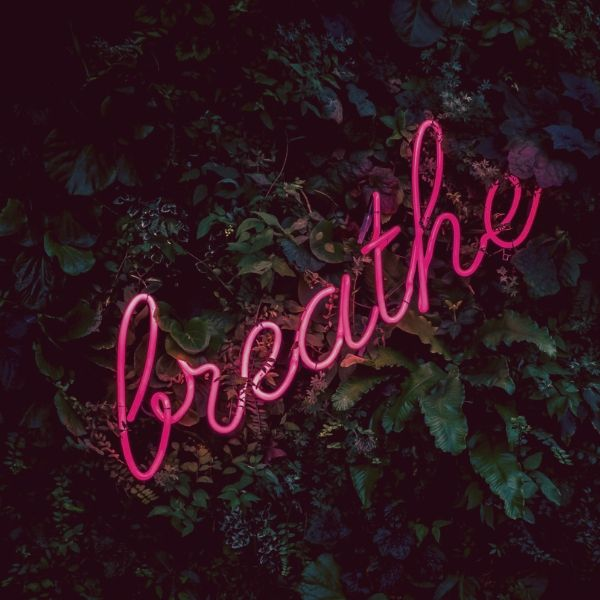 Stay at home neon letters spelling breathe against foliage