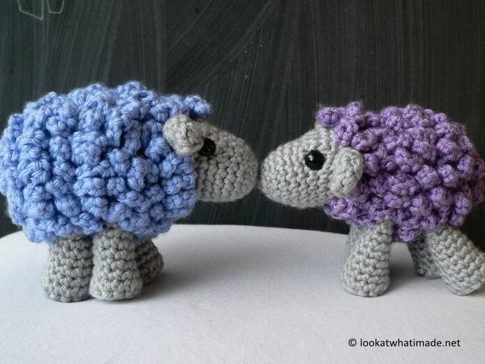 Shorn the Sheep