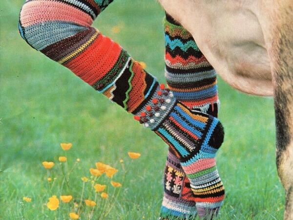 Multi coloured long Socks