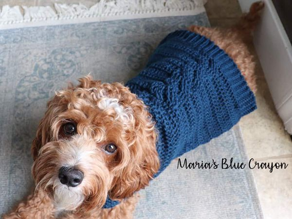 Cabled Sweater for Dogs