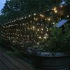 Solar Net Lights