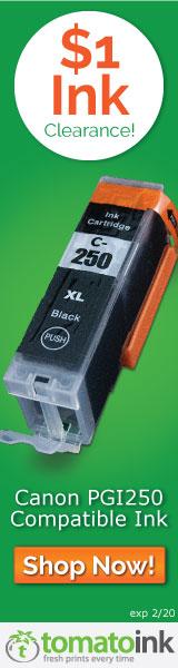 Canon PGI 250 XL Black Ink
