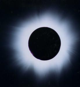 新月の写真2