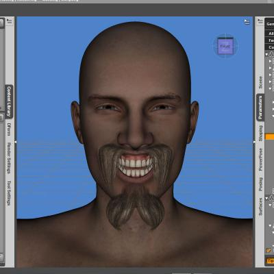 Rigging Facial Hair in Daz Studio 4.6+
