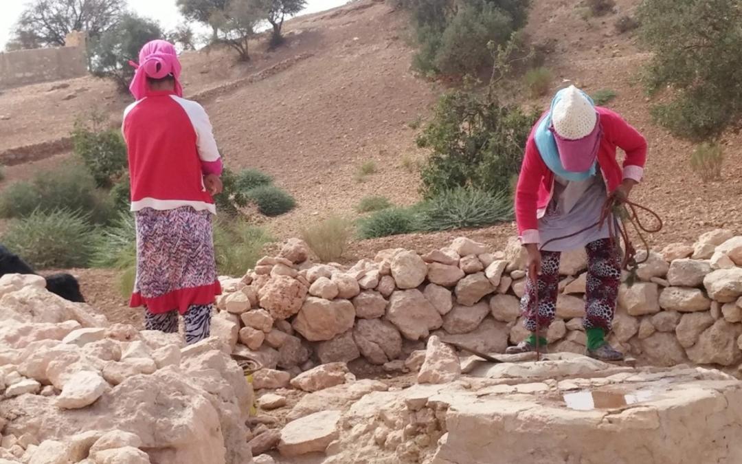 في أرياف تونس المساواة في الميراث نادراً