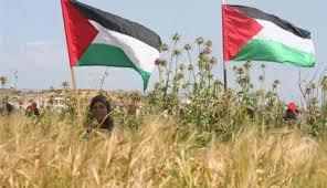 فلسطينيات يصنعّن من الضعف قوة