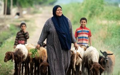 المرأة الريفية العربية في دائرة مفرغة من الفقر والتهميش والهشاشة الاجتماعية