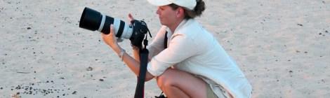 Safari Photo Tip #2 Back Button Autofocus