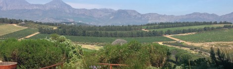 Good Food, Good Wine at Waterkloof Wine Estate