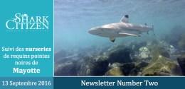 Mayotte – Seconde journée de suivi des requins