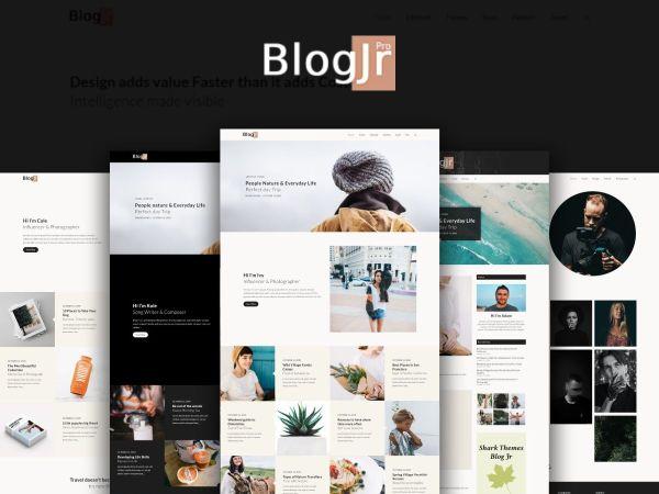 BlogJr Pro – Modern and Classic Fusion WordPress Blog Theme