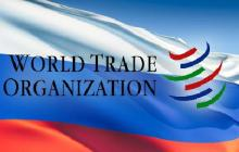 Russia as a New Entrant to the WTO