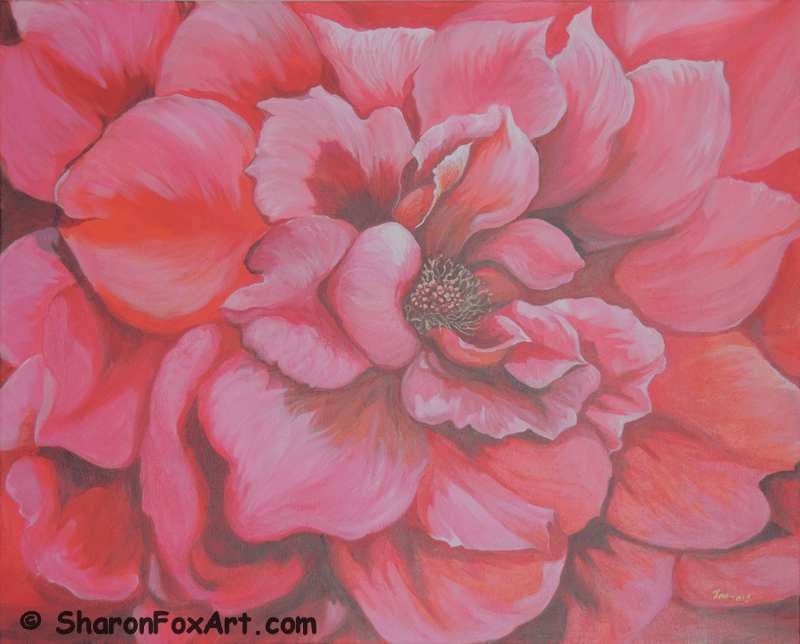 Pink Rose Close Up Painting