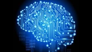 ibm_human_brain