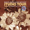 25th White Rock Lake Artist Studio Tour This Weekend!