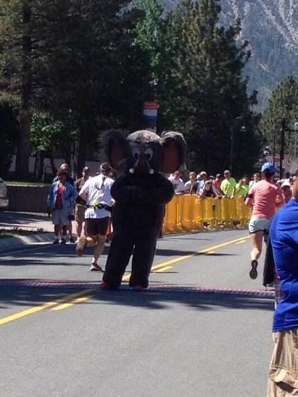 #47 Mammoth Half Marathon