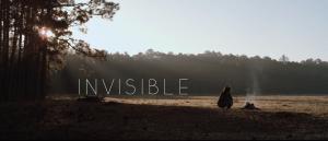 InvisibleFBcover
