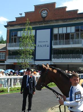 Ascot race track