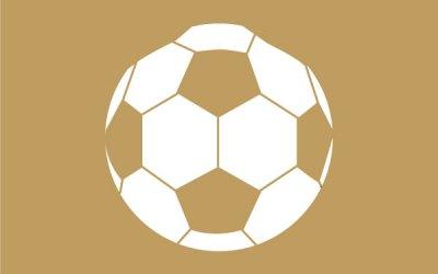 Sports Report (Football)