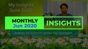 Monthly Insights June 2020