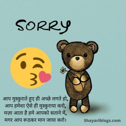 sorry shayari in hindi for dost image