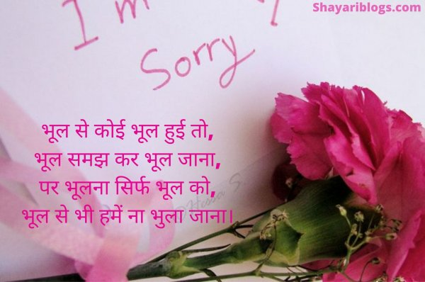 sorry Status in hindi image