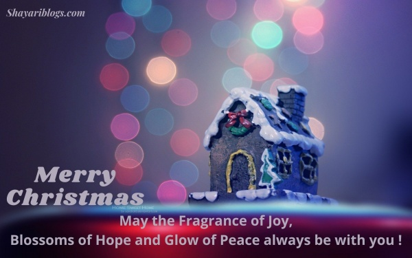 english quotes of christmas day image
