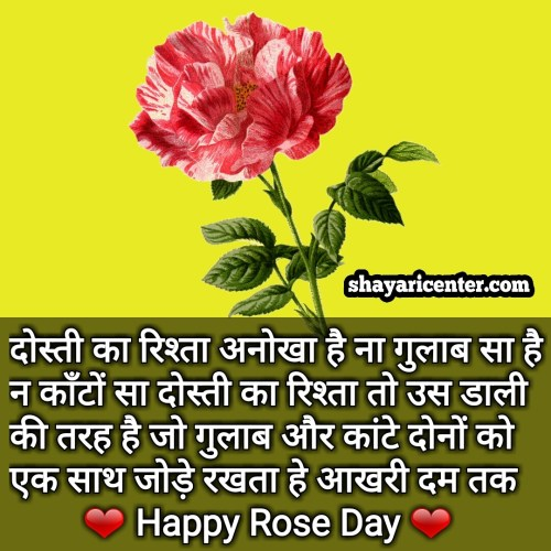 Happy Rose Day Shayari, 7th Feb Wishes Quotes