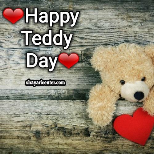 wish u happy teddy day