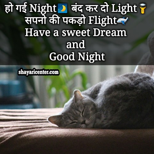 sad good night shayari image