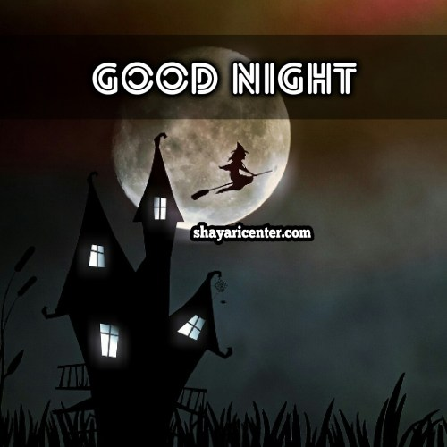 good night shayari image in hindi for girlfriend