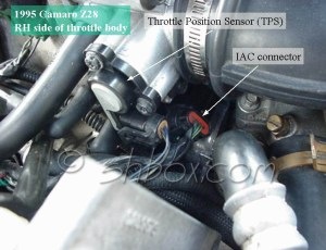 4th Gen LT1 FBody TechComponent Location Views