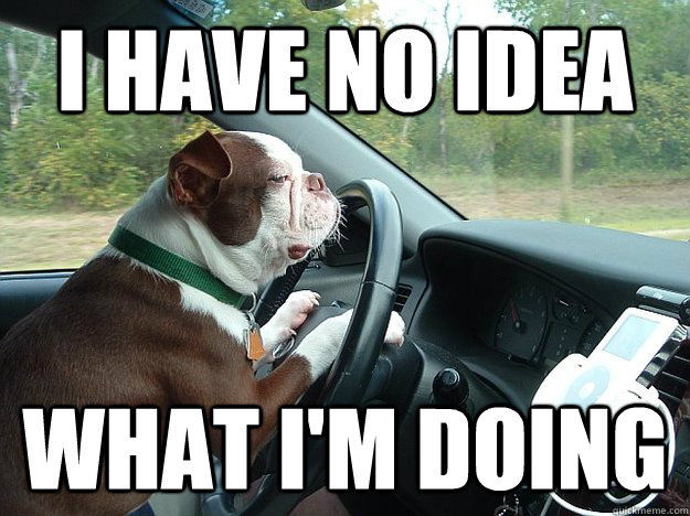 Collection Of Funny Driving Quotes And Car Memes Shear