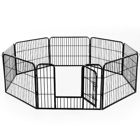 A studio shot of the dog pen in the octagonal formation