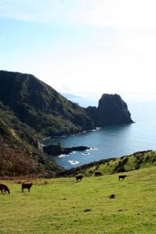 Pooley Bay