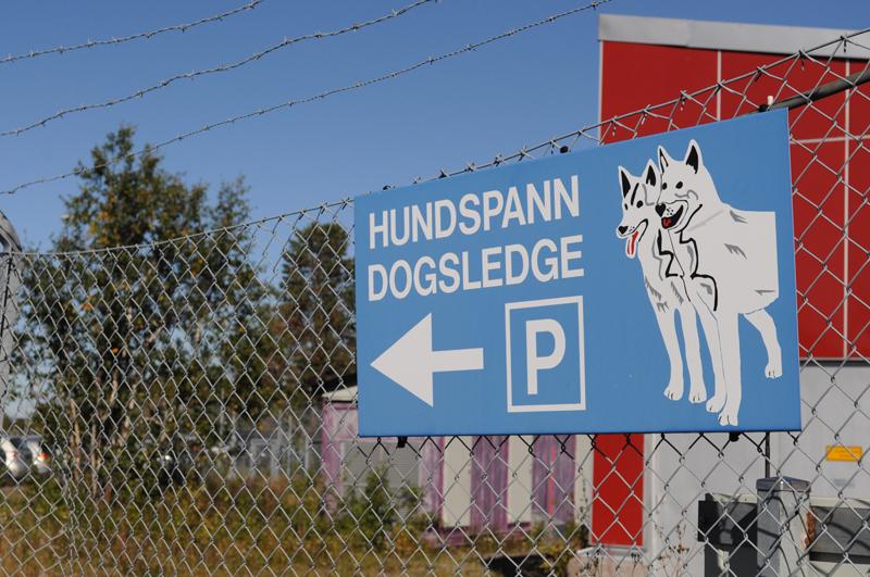 Viel gibt es in Kiruna nicht, aber für Hundeschlittenparkplätze ist gesorgt