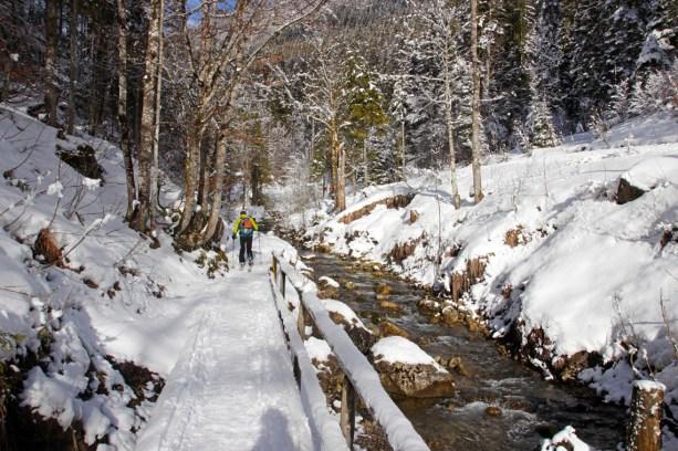 Am Bach schlängelt sich der Weg romantisch durch den Wald