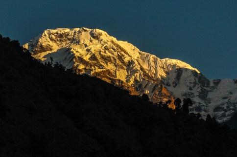 Morgenlicht am Annapurna South