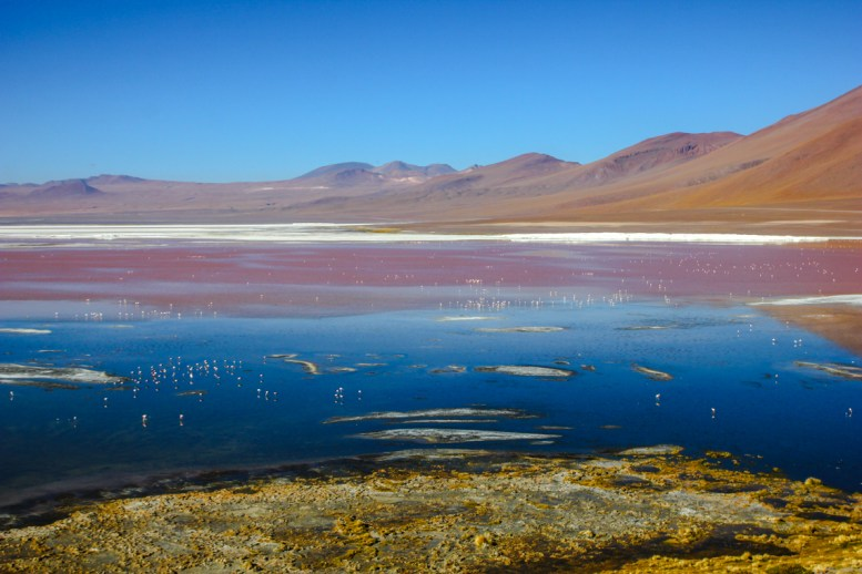 Laguna Colorada am Morgen