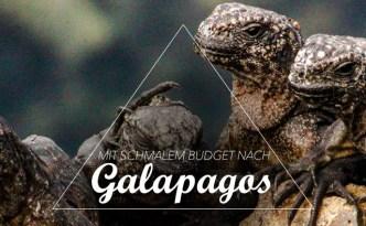Galapagos Low Budget
