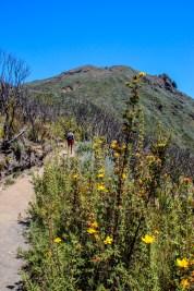 Aufstieg zur Saddle Hut