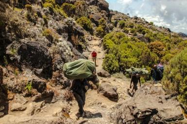 Träger auf dem Weg zum Shira Plateau