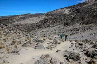 Am Kilimanjaro vorbei