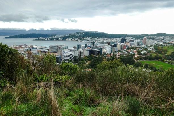 Ausblick vom Te Ahumairangi Park