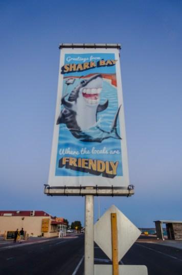 Willkommen in der Shark Bay