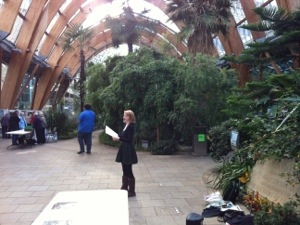 Debra Finch Singing in the Winter Gardens