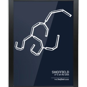 Sheffield DNA Framed Art Print