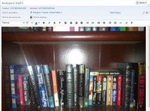 Bookshelf1-400x298
