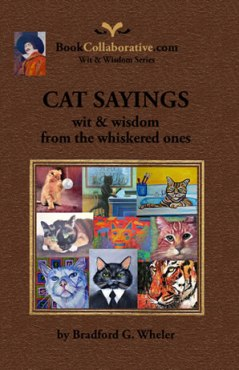 Cat Sayings wit and wisdom from the whiskered ones